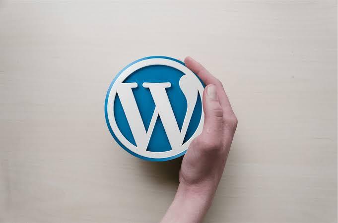 What is WordPress Website Development in Hindi क्या है?